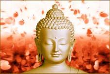 Lama Fera Healing Service by Reiki Paradise